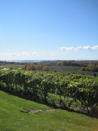 Chateau Chantal Winery & Tasting Room: The View