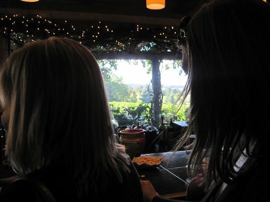 Bowers Harbor Vineyards: small tasting area... 2nd row