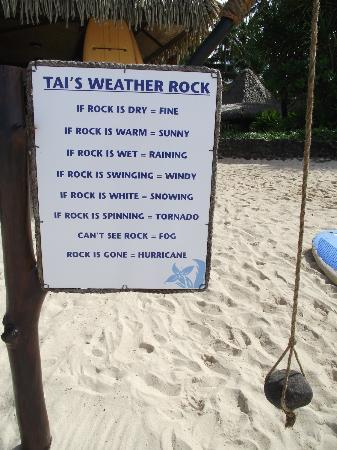 Bella Beach Bungalows: weather rock