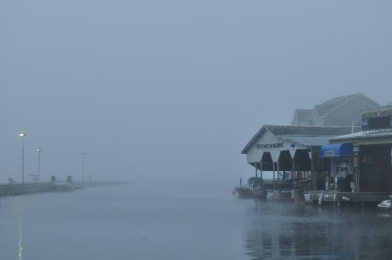 Captain Visger House: Early morning fog