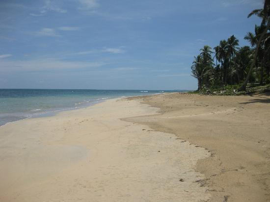 Zoetry Agua Punta Cana: Quiet beach.