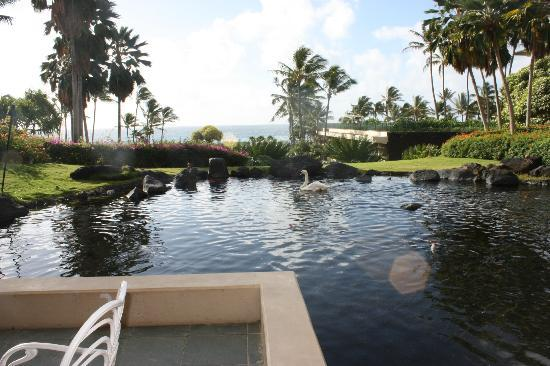 Grand Hyatt Kauai Resort & Spa: Llima Terrace - View at breakfast