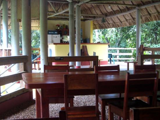 Crystal Paradise Resort: Community dining area