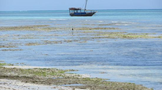 Essque Zalu Zanzibar: Jetty View