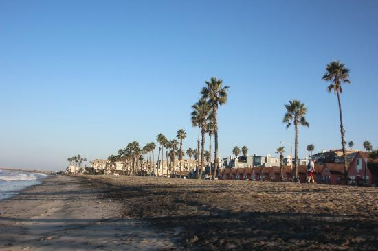 Wyndham Oceanside Pier Resort: Beach view