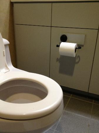 ذا ريدج تاهوي: Low toilet 