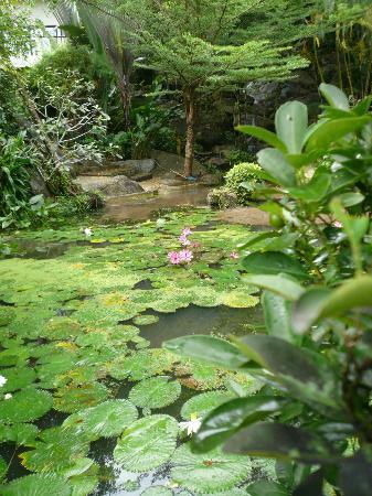 Aquamarine Resort & Villa: Views from around the Resort