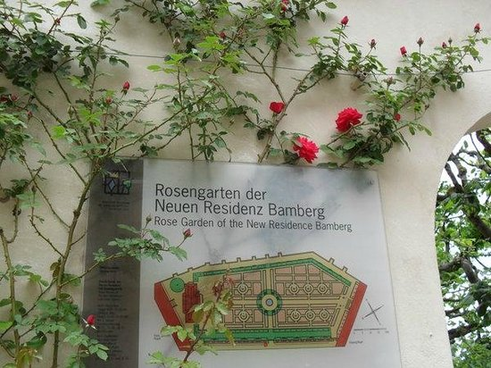 Rose Garden at the New Residenz
