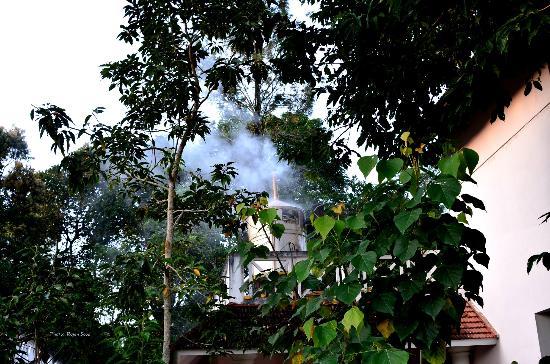 Hotel Treetop: Hotel Boiler