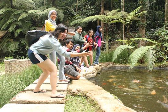 SanGria Resort & Spa: memberi makan ikan....
