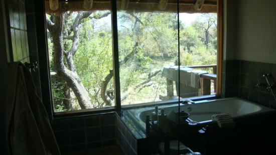 Thornybush Game Lodge: View from the bath