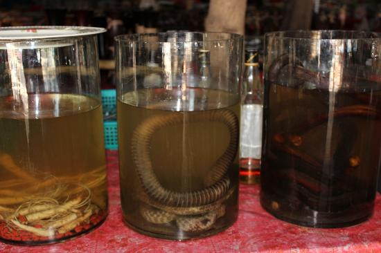 Le Meridien Chiang Rai Resort: Snake Whisky on Golden Triangle Tour