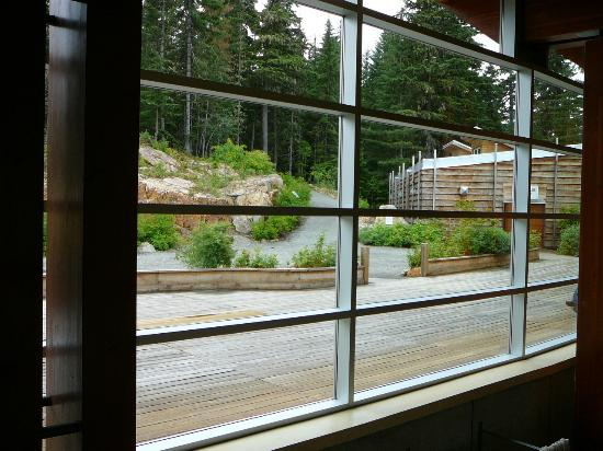 Squamish Lil'wat Cultural Centre: View of plaza Squamish showing longhouse on right