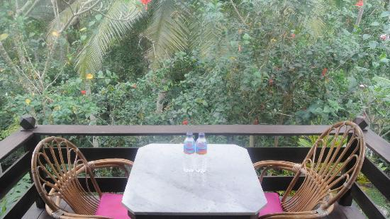 Ubud Sari Health Resort: my own balcony where over look the pool and small waterfall