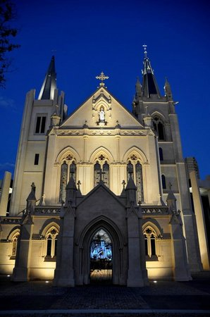 St. Mary's Cathedral: The Cathedral at Night