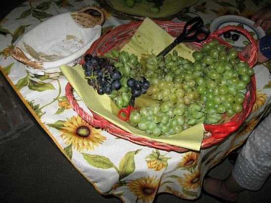 Casale La Piaggia: Freshly harvested grapes as part of dessert
