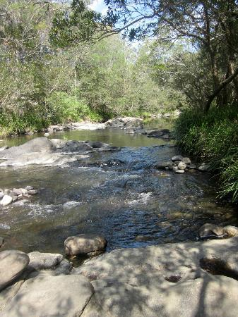 Riverwood Downs Mountain Valley Resort: The river.
