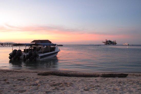 Scuba Junkie Hotel & Diving: sunset