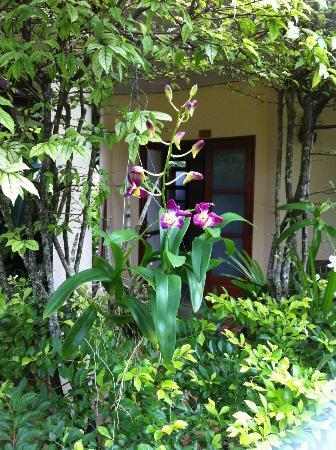 Palm Garden Resort Phuket: Eingang zum eigenen Bungalow