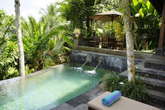Bidadari Private Villas & Retreat: Bidadari - Tegung Villa