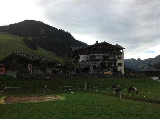 Unterschwarzachhof: View