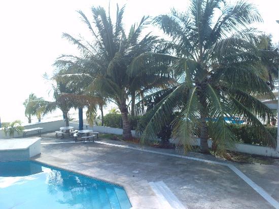 Paradise Beach Club Hotel : AT the pool