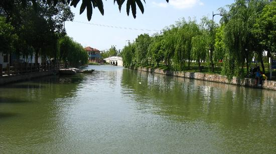 Zhujiajiao Ancient Town: Ah...the graceful willows!