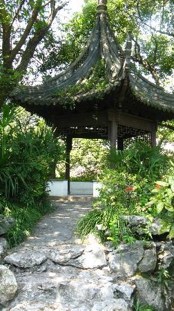Zhujiajiao Ancient Town 사진