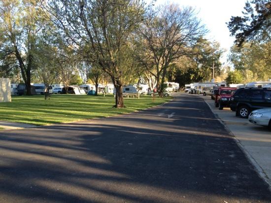 Cowra Van Park: park on a busy day