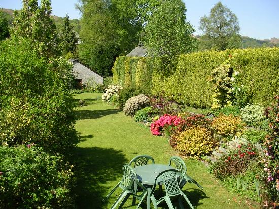 Highfield Bed & Breakfast: Rear Garden