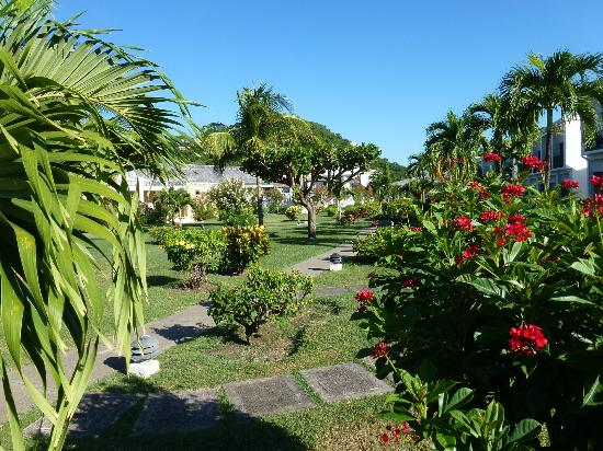 Coyaba Beach Resort: Hotel gardens