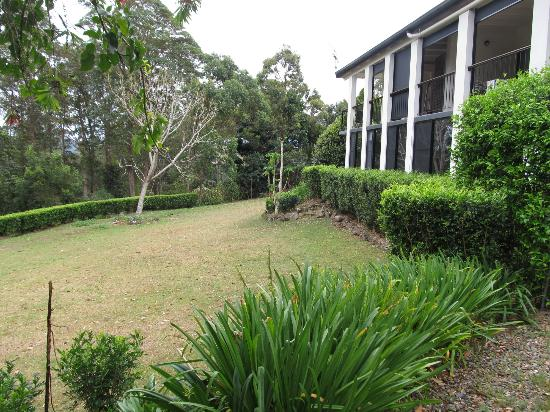 Mapleton Falls Accommodation: Garden