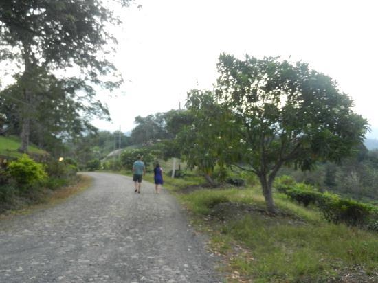 Sabah Tea Garden: Walking to dinner