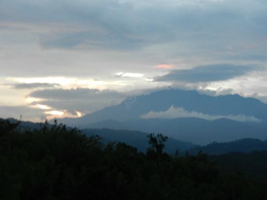 Sabah Tea Garden: View of Mt.Kinabalu