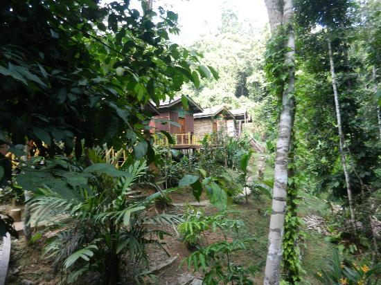 Mat Leon Village: general area