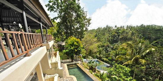 Beji Ubud Resort: View From The Mansion