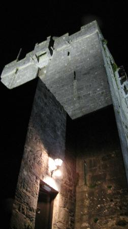 Dunguaire Castle's Medieval Banquet: Outside view of the castle