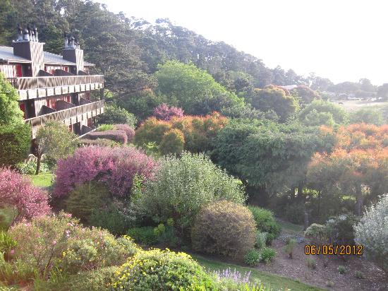 Stanford Inn by the Sea: More views