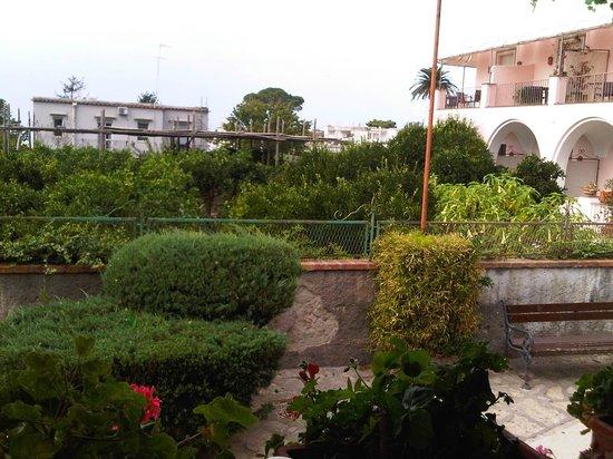 La Rondinella: view from terrace