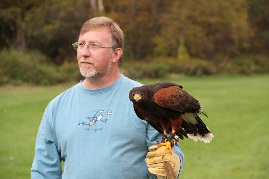 Green Mountain Falconry School: Me with the harris hawk.