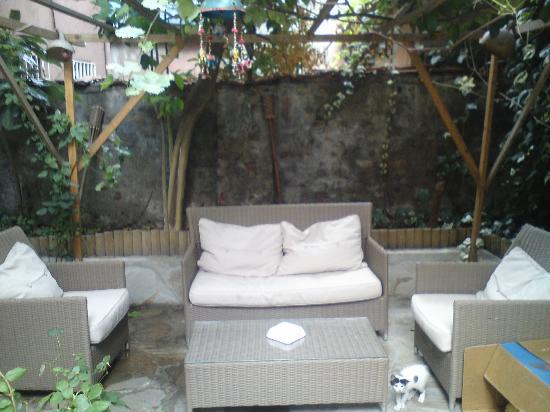 Diva's Hotel: lemony garden