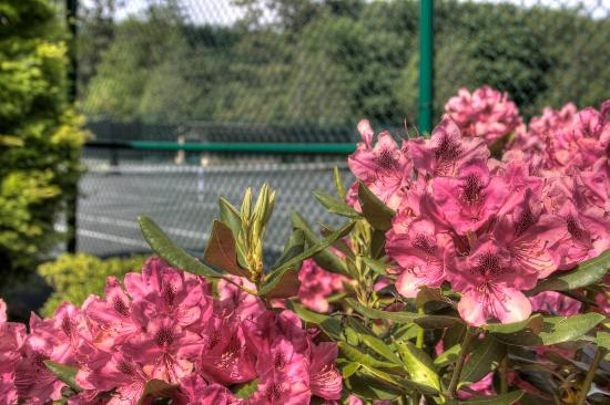 Foxhunt at Sapphire Valley: Tennis Courts