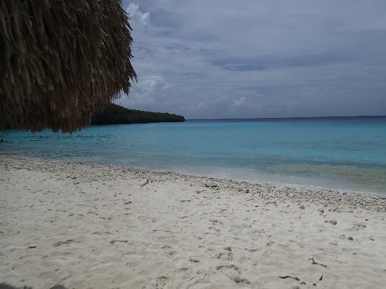 Cas Abao Beach: Playa Cas Abou Beach - Curacao