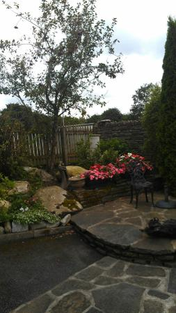 Driftwood: Early morning misty rain enhanced an already lovely corner garden