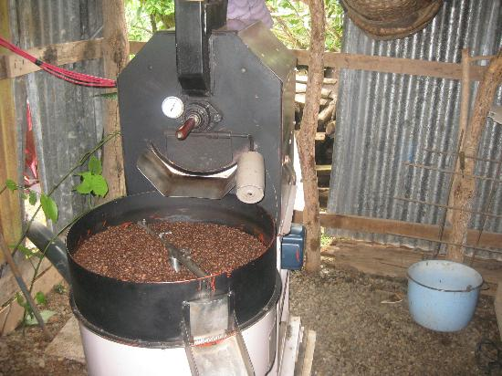 El Toledo Coffee Tour: Coffee brewing