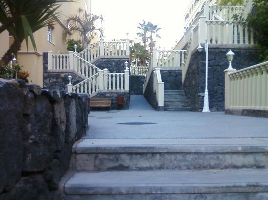 Winter Gardens : Complex Steps