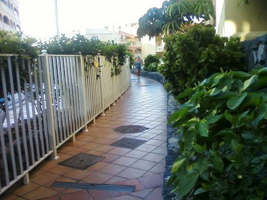 Winter Gardens: Walkway