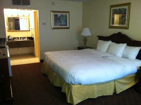 Clarion Inn & Suites: Nice Room