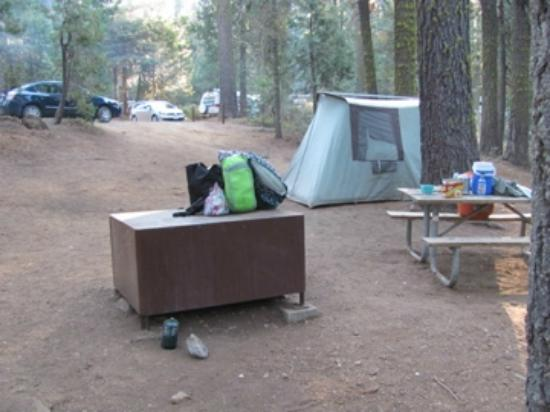 Crane Flat Campground: #418 from the back of the site
