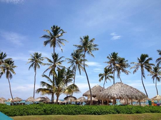Now Larimar Punta Cana: Beach
